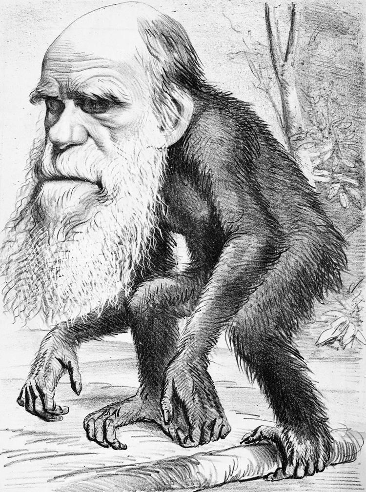 Sabio caricaturizado en 1871.