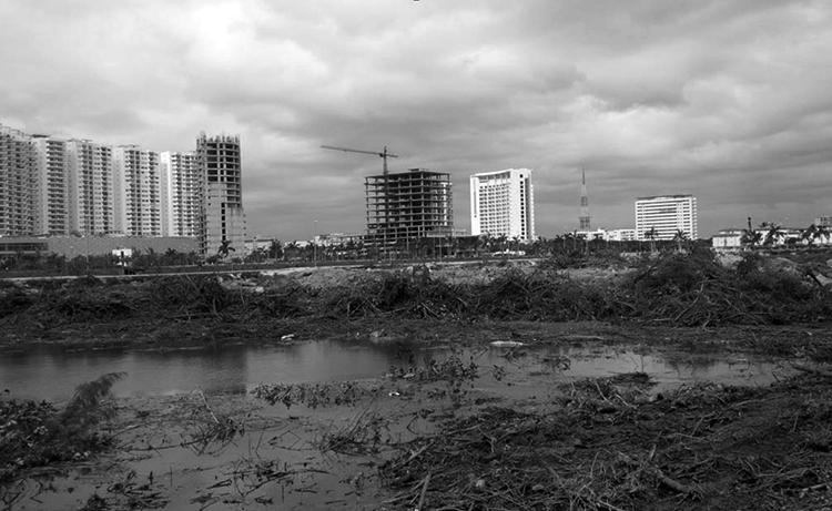 Hoteles vs manglares